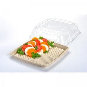 pulp platter and lid