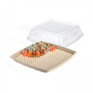 Pulp platter & lid
